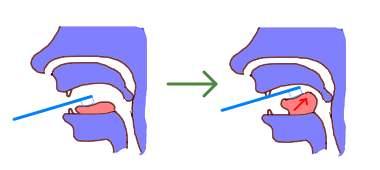 歯ブラシで[r]の音を確認しよう